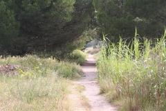 FR08/2 - Fauna und Flora