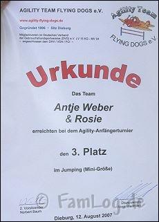 agilitytunier-12-08-07 022