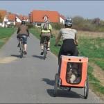 Fahrradtour mit Hund