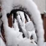 Schnee, Schnee, Schnne
