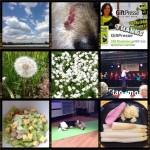 Week-in-PIX-2013 #19