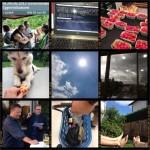 Week-in-PIX-2013 #24