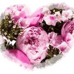 Blumen für Mama (10€ Gutschein)