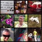 Week-in-PIX-2014 #25