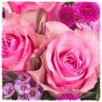 Blumen gegen schlechtes Gewissen oder doch der Liebe wegen?