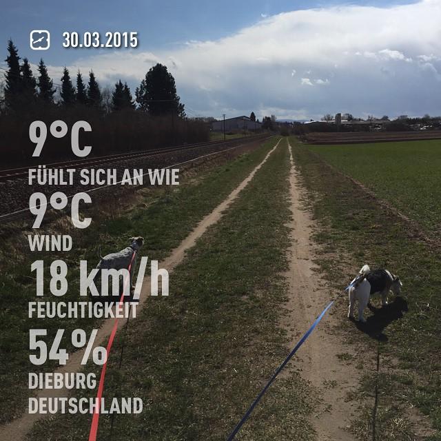 Zwischen zwei Wolken! #instaweather #weather #dieburg #deutschland #day #cold #de #aufdemwegindenladen