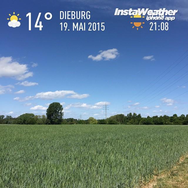 Frischer Wind #siehtmannicht #spuertmannur #instaweather #wetter #dieburg
