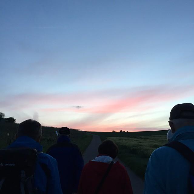 Morgenwanderung ^^ #owkdieburg #wandern #dieWebers