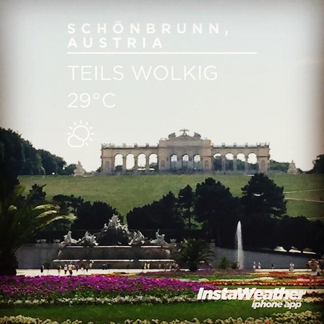 Warmes Schönbrunn #kurzurlaub #Ausflug #miteinemschuh #wetter #wien #sommer