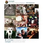 Instagrams BestofNine2015 – Danke für eure Likes :)