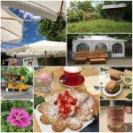 Sommertag im Weingut Zwölberich