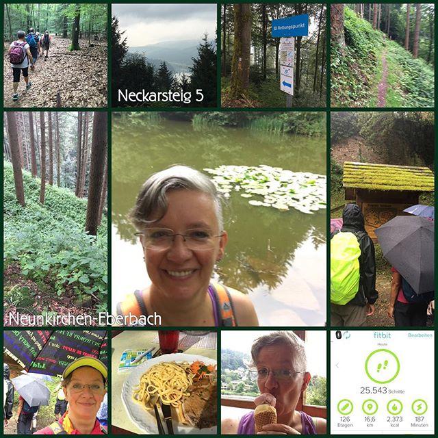 Wanderung 08/2016 *check* #owk #owkdieburg #wanderung #ohneschatzi #neunkirchen #erberbach #16km