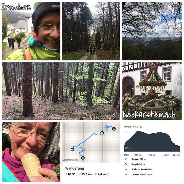 4. Wanderung 2017 #owk #owkdieburg #wandern #wanderung #16km #nekarsteig7Ettappe #hirschorn #neckarsteinach