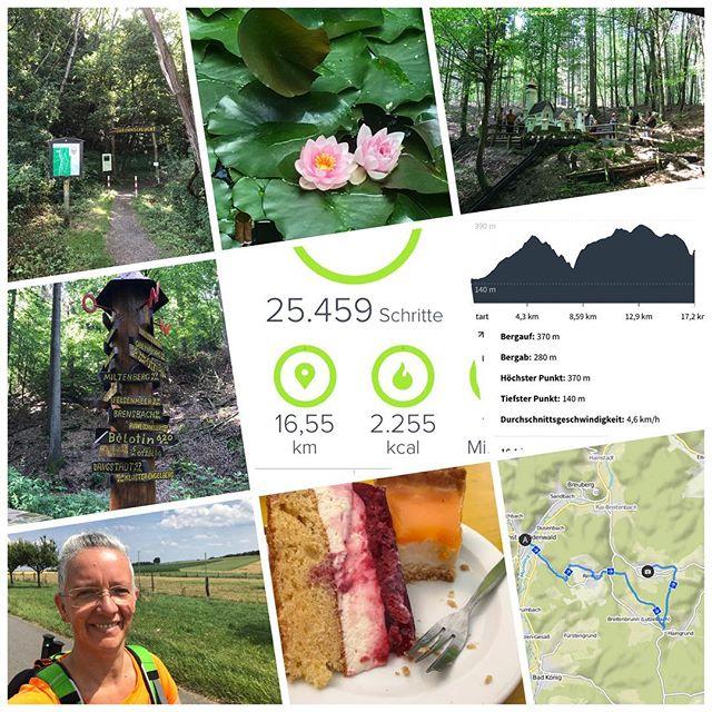 5. Wanderung 2017 #owk #owkdieburg #wandern #wanderung #17km #höchst #lützelwiebelsbach #owklützelbach